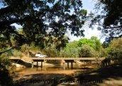 wenlock river bridge
