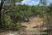 lakefield bush walk