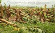 cyclone queensland