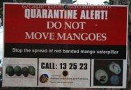 australian quarantine info