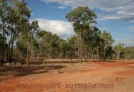 cairns outback