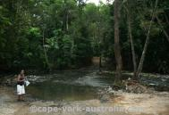 cape tribulation to cooktown
