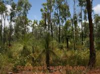jardine river national park