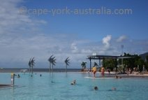 swimming in cairns