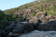 cape melville national park