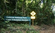 daintree national park