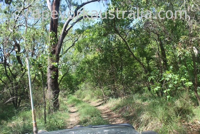 pormpuraaw to kowanyama mitchell river track