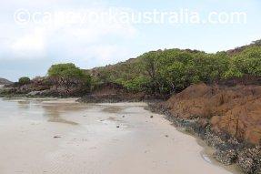 tip of australia bottom walk muddy