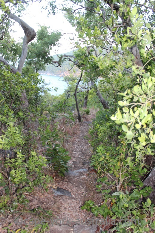 finch bay walk descent