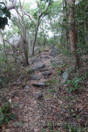finch bay walk rocky