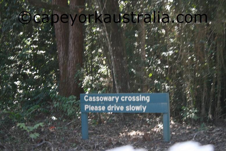 cassowary sign