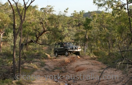 4wd cape york