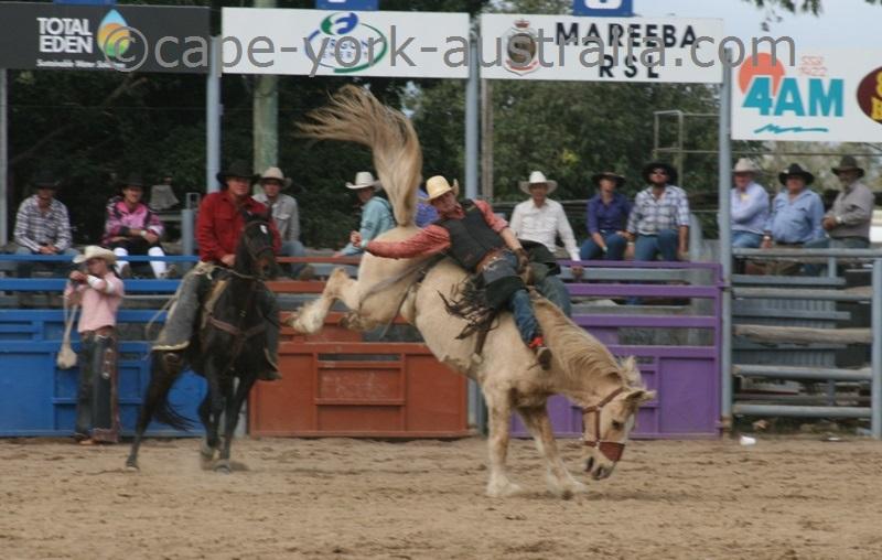 bareback bronc riding