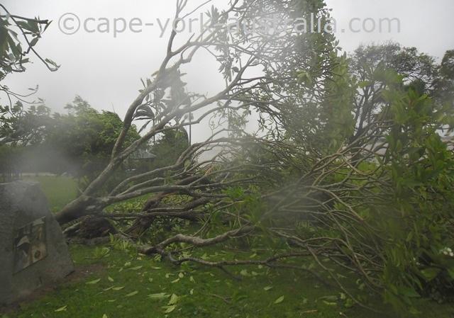 cyclone speed