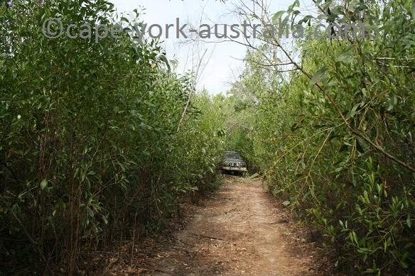 ninian bay road