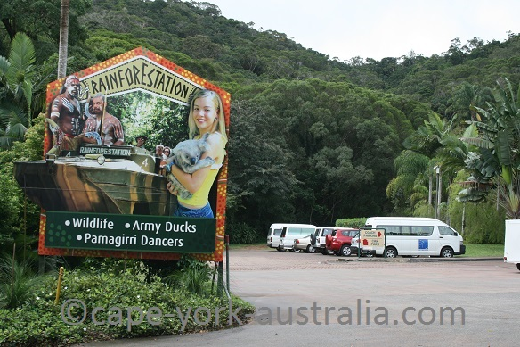 cairns kuranda rainforestation