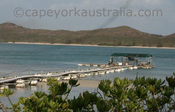 roko island jetty