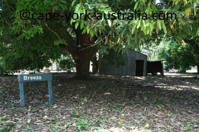lakefield breeza homestead