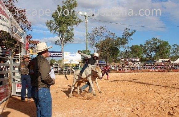 weipa bull ride