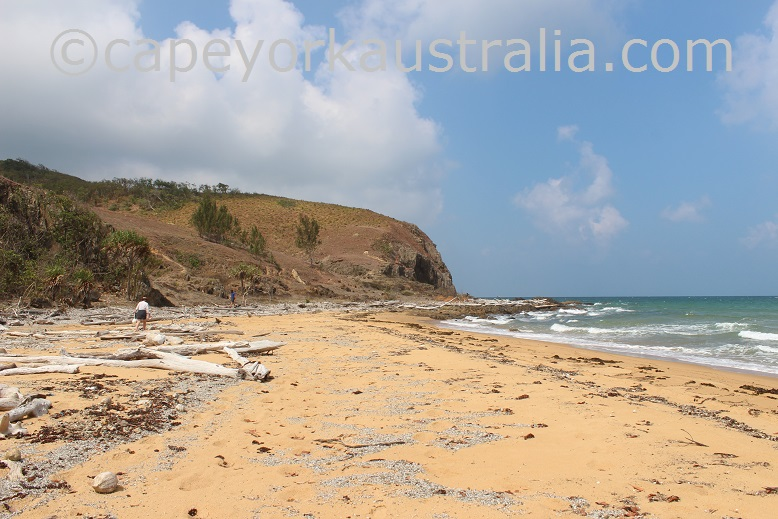 cooktown northern beaches