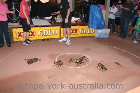cooktown festival crab races