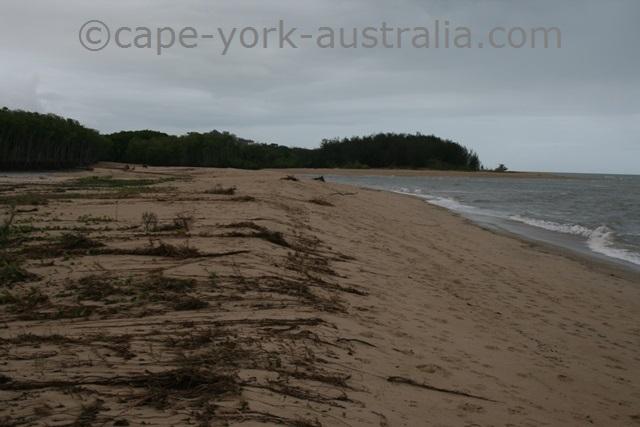 holloways beach walk