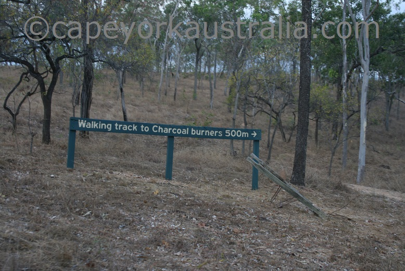 palmer river goldfields charcoal burners