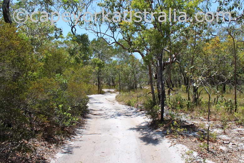 larradinya creek track