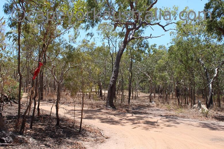 punsand bay track north of larradinya creek