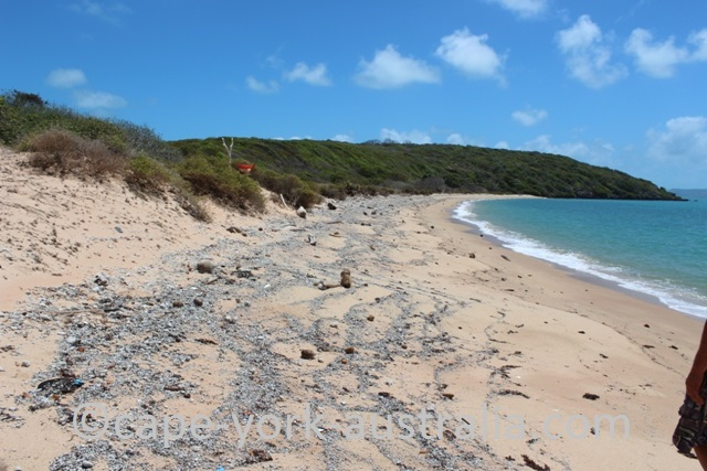 albany island beach walk