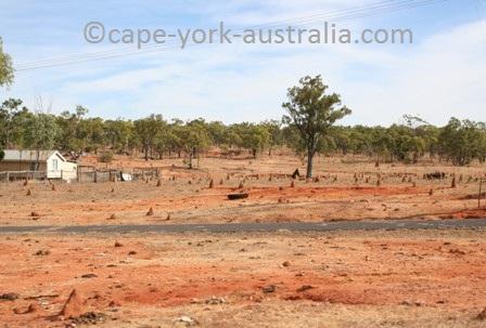 almaden termite mounds