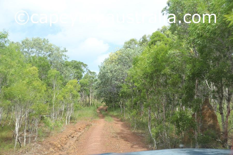 badu island 4wd track