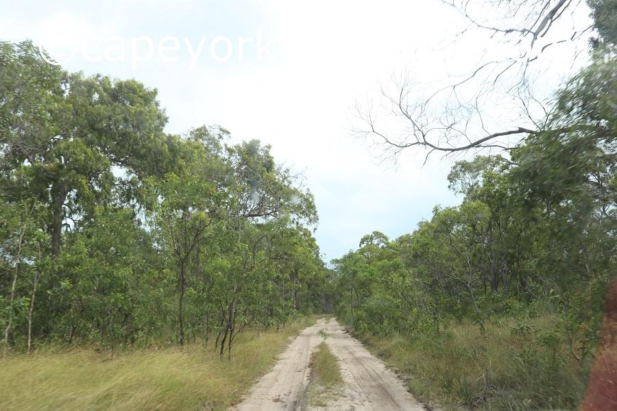 badu island argun track