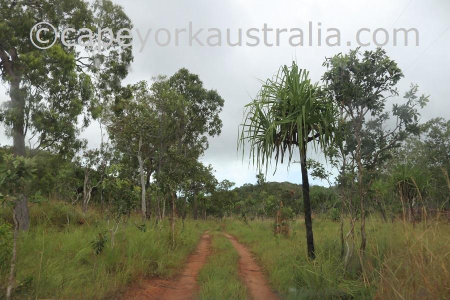 badu island eastern road