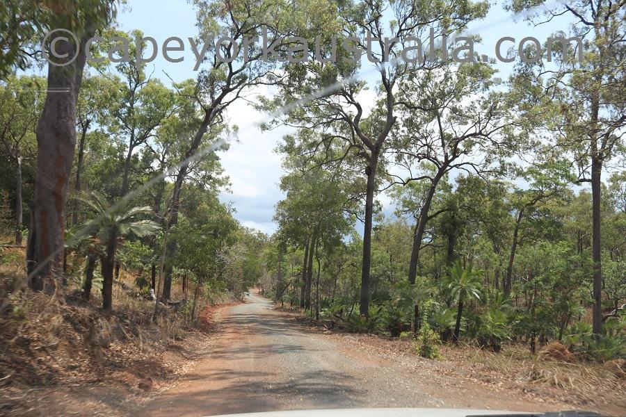 badu island roads