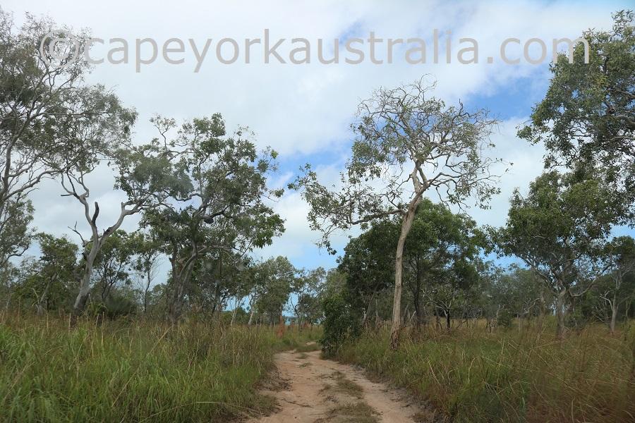 badu island yaza beach tracks