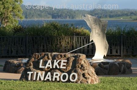 barra lake tinaroo