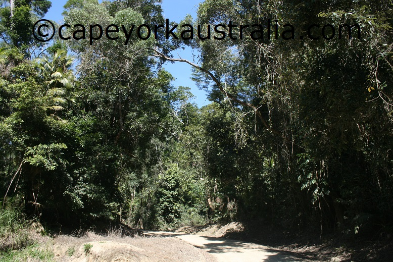 kuranda national park