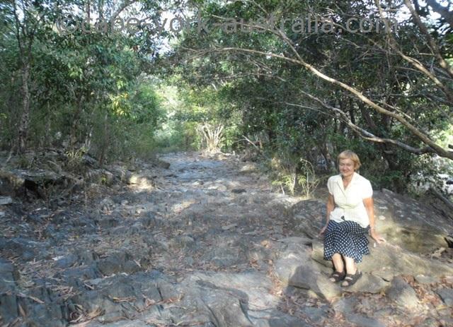 bloomfield falls walk