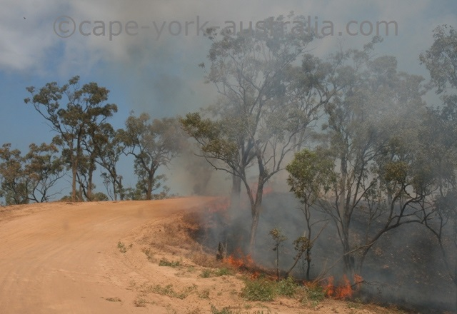 bush fires cape york