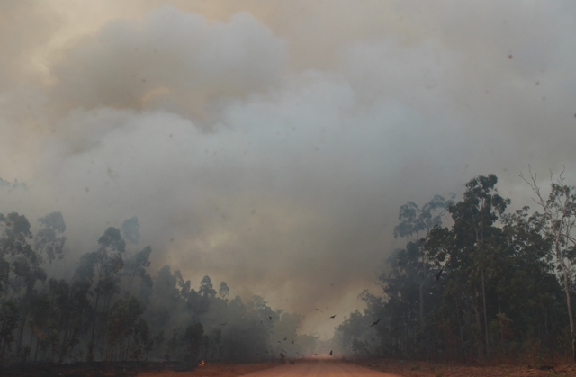 bush fires queensland