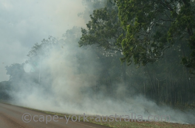 bushfire bamaga
