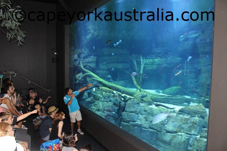 cairns aquarium river ecosystem talk