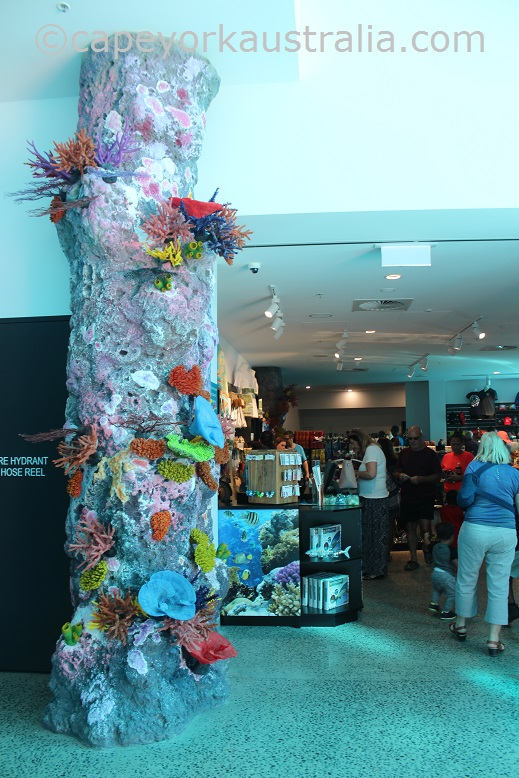 cairns aquarium shop