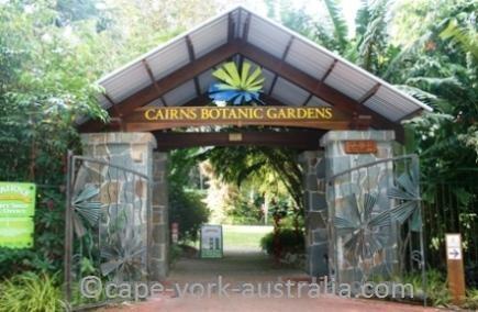 cairns botanic gardens