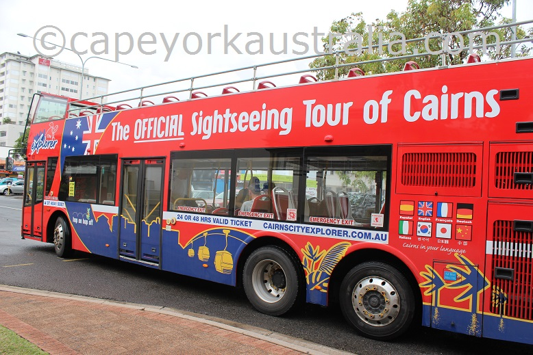 cairns hop on hop off sightseeing bus