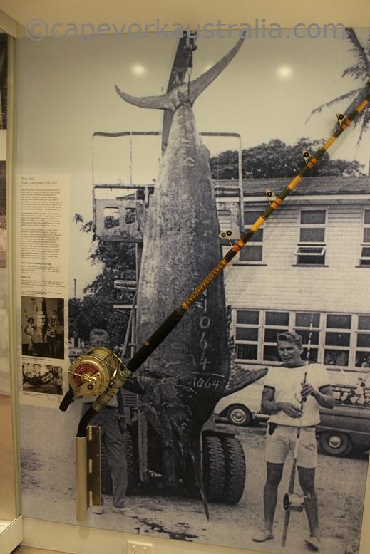 cairns museum big fish