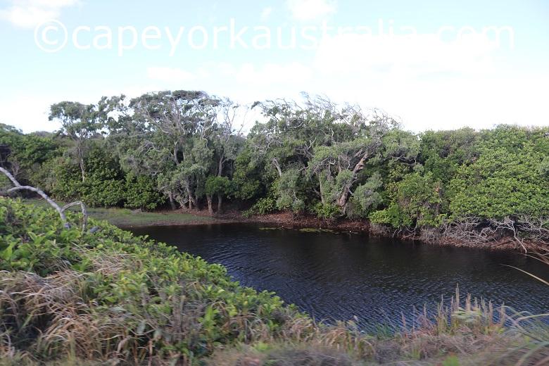 cape bedford lagoon