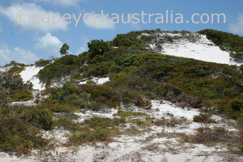 cape bedford sand dunes