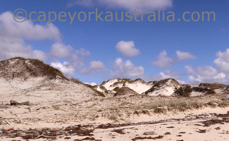 cape flattery beach drive sand dunes